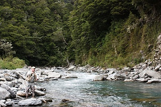 In New Zealand big things can come in surprisingly small packages like this back country mountain stream