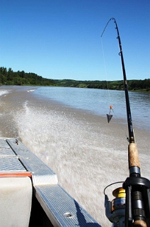 A North Saskatchewan River sturgeon rod rigged with a slip sinker