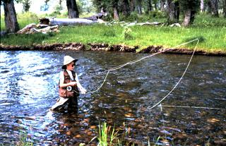 Mid sized streams with plenty of back cast room are perfect for beginners of any age