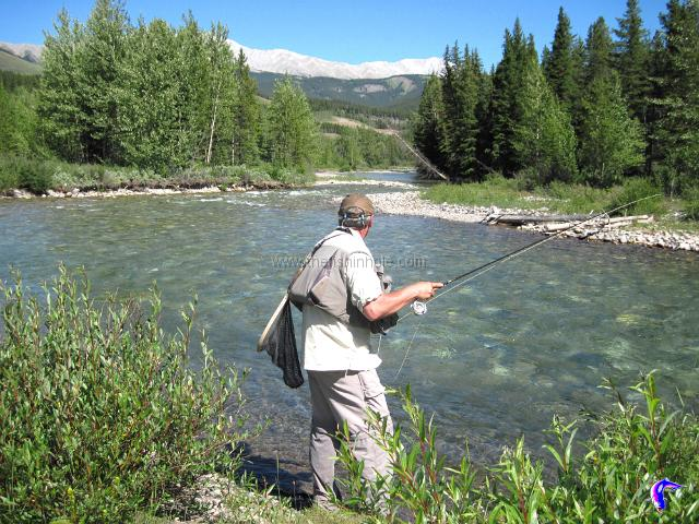 Wet flies fishing article by the fishin 39 hole for Wet fly fishing