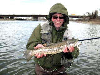 This fall in City of Calgary I caught a brown trout that ate a streamer on the Bow River