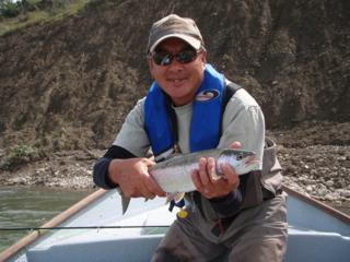 A healthy Bow River rainbow
