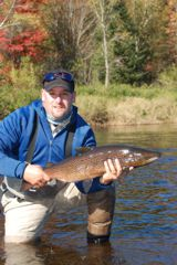 A typical male salmon from the Miramichi