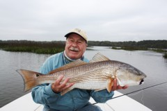 Hilton Head Island redfish