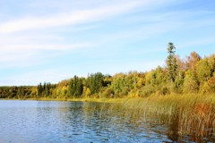 Dolberg Lake - an Alberta stillwater renowned for its large rainbow trout