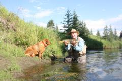 Fly Fishers' Christmas brown trout in Alberta
