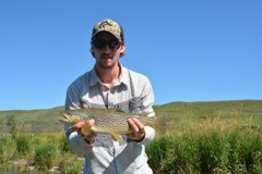 Casting streamers or hopper patterns along grassy banks is a proven successful tactic on the Bow
