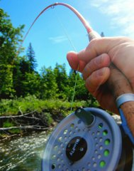 Fiberglass fly rods have made a comeback.