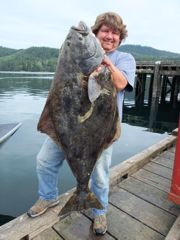 Halibut, that most delicious of flatfish, can grow huge.
