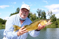 90 per cent of Alberta walleye occupy 10 per cent of the water