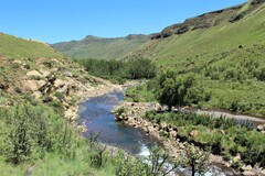 Trout Stream in South Africa's Drakensberg Mountains.