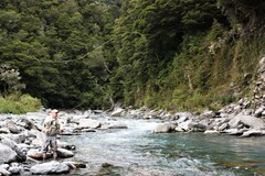 New Zealand trout stream.