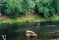 Salmon fishing on Scotland's Spey River.