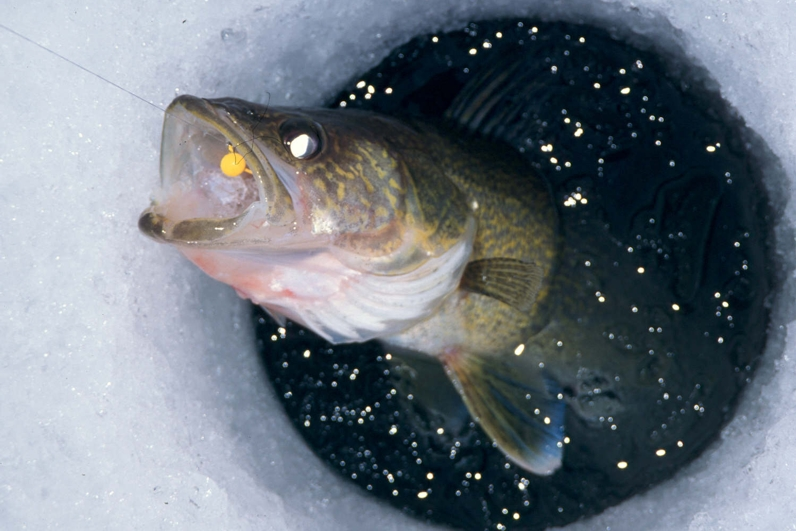 ice fishing hole - photo #48