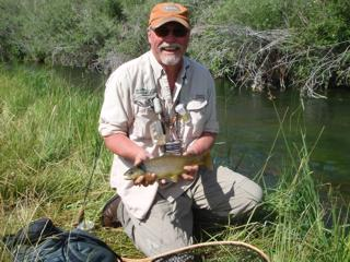 Central Alberta's brown trout streams will test your skills in close quarters