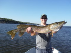 Post-spawn pike were quick to hit topwater lures