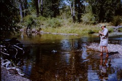 Brown Trout fishing in Little Blackfoot River Dearlodge Montana