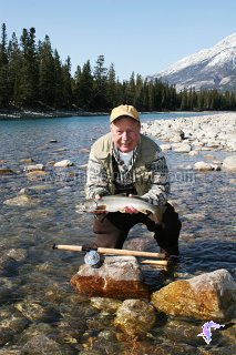An Athabasca River winter bull trout